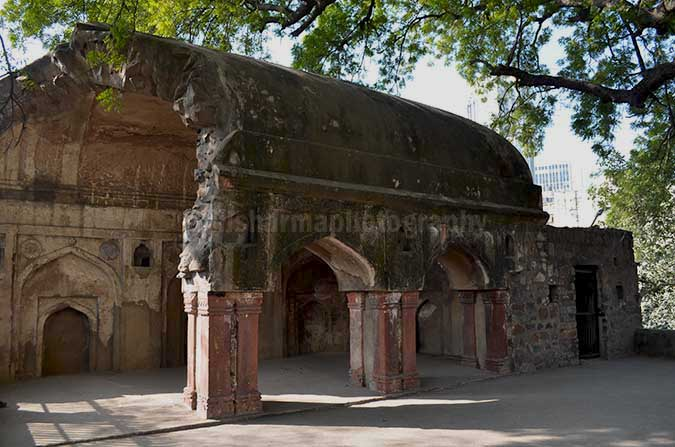 Monuments: Agrasen ki Baoli, New Delhi (India) - At the top of this boali, there is a huge Neem tree and next to it are the ruins of a mosque belong to Tughlaq period. by Anil Sharma Photography